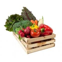 dieta sana encias