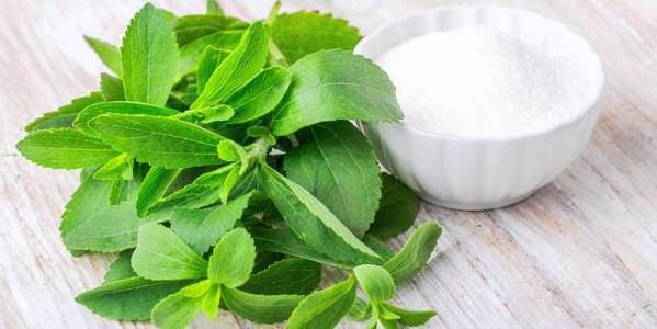 stevia para evitar sarro